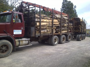 Log Truck with  Pup